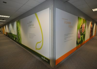Syngenta Corporate Office Design